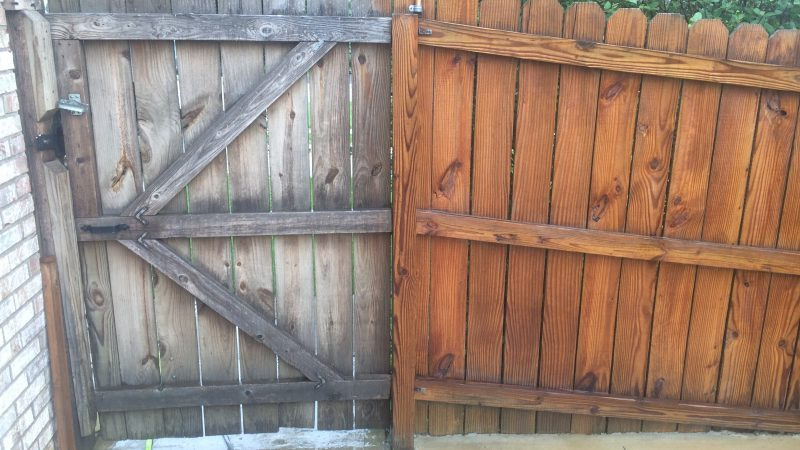 Fence Staining: During