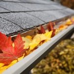 Fall Gutter Cleaning Special